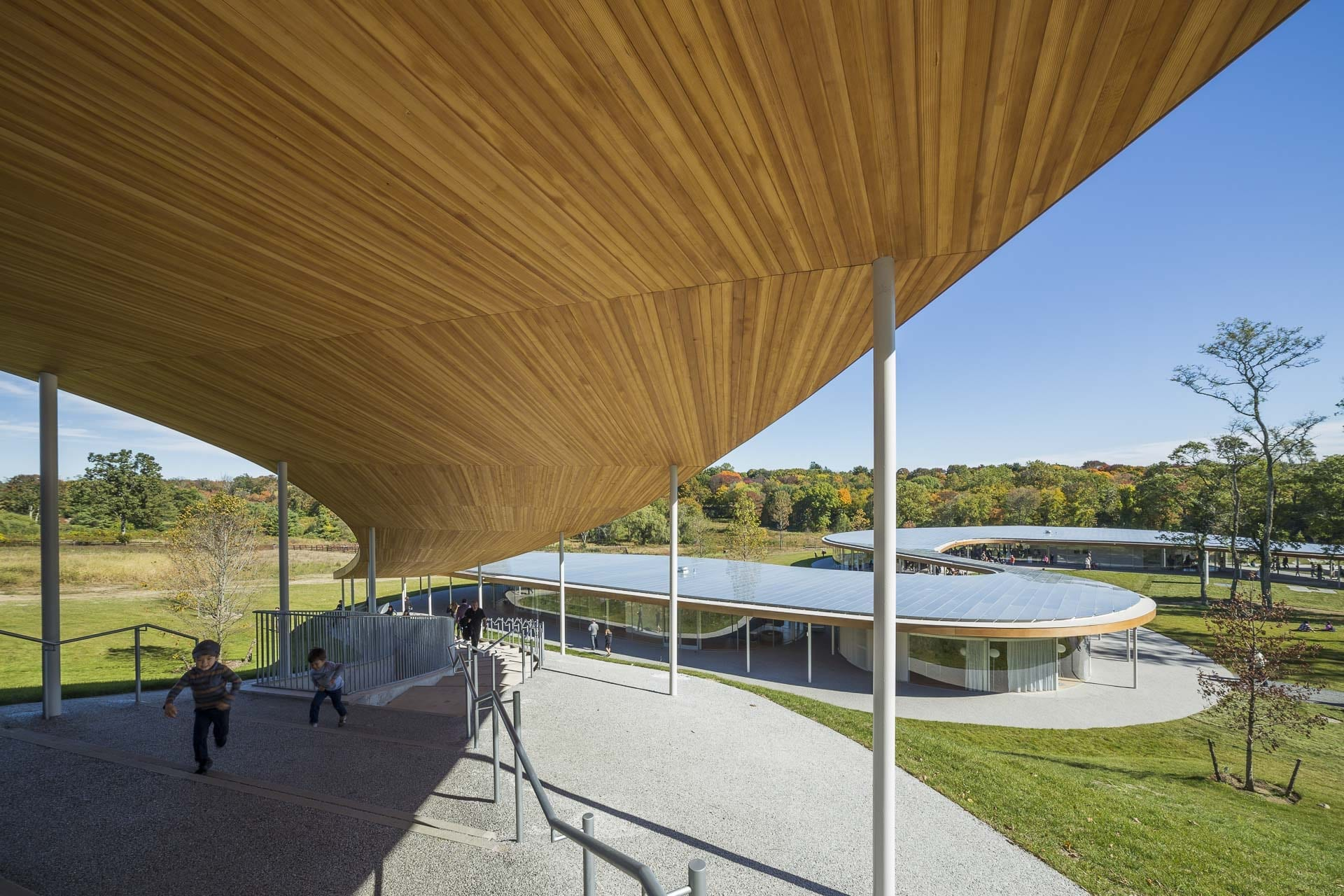 Wood panel ceiling provides a canopy for The River at Grace Farms